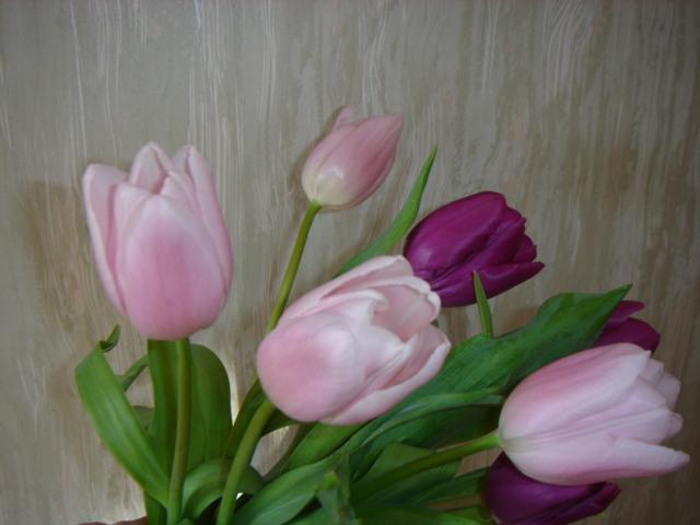 Glück in Pastell, Frühling nun komm endlich